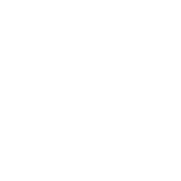 Diamond Academy Logo